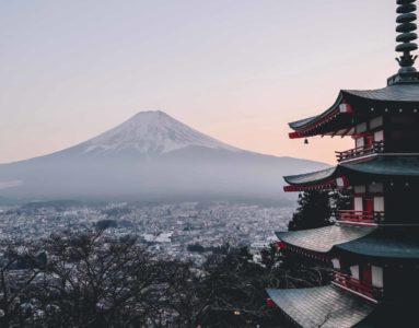 Szok kulturowy i ciekawość świata – praca w ambasadzie Japonii